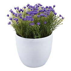 https://cdn.homedepot.com.mx/productos/126250/126250.jpg